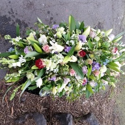 Family Tribute Christchurch