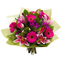 Fresh Gerberas and Lilies from Flower Biz Christchurch